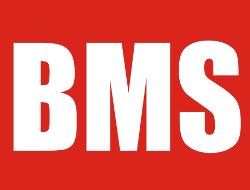 BMS Högtalarelement